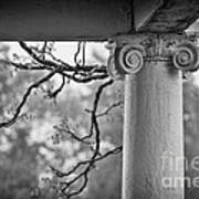 Column In Spring Art Print by Susan Isakson