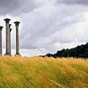 Columns 2 Art Print