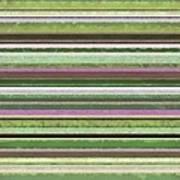 Comfortable Stripes Lv Art Print