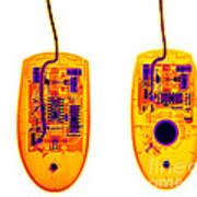 Computer Mouses Art Print
