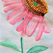 Coneflower - Watercolor Art Print