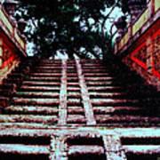 Coral Stairway Art Print