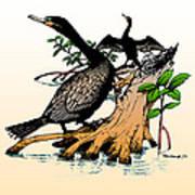 Cormorants On Mangrove Stumps Filtered Art Print