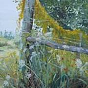 Corner Of Lace And Vine Art Print