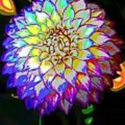 Cosmic Natural Beauty Art Print