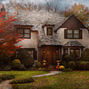 Cottage - Westfield Nj - The Country Life Art Print by Mike Savad