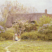 Cottage Freshwater Isle Of Wight Art Print by Helen Allingham