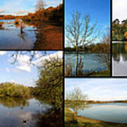 Country Parks Collage Art Print