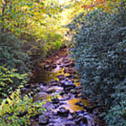 Courthouse River In The Fall 3 Art Print