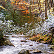 Courthouse River In The Fall Art Print
