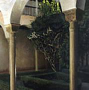 Courtyard Garden Art Print