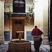 Courtyard Visitor Art Print