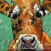 Cow 484 Art Print