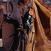 Cowboys Saddle And Chaps Detail Art Print