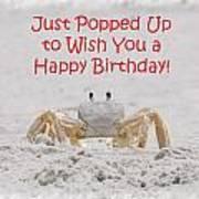 Crab Happy Birthday Art Print