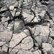 Cracked Rocks On Shore Art Print