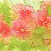 Creamsicle Hibiscus Art Print