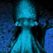 Creatures Of The Deep - The Octopus - V4 - Cyan Art Print by Wingsdomain Art and Photography