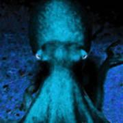 Creatures Of The Deep - The Octopus - V4 - Cyan Art Print