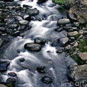 Creek Flow Panel 3 Art Print