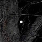 Creepy Tree And Full Moon Art Print