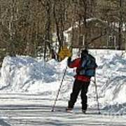 Cross Country Skier On Cape Cod Art Print