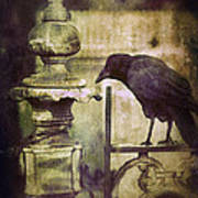Crow On Iron Gate Art Print
