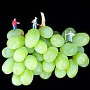 Cultivation On Grapes Art Print by Paul Ge