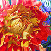 Red And Yellow Dahlia Art Print