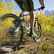 Cyclist Rides Mountain Bike Among Trees Art Print