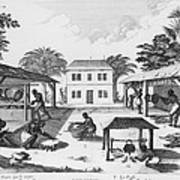 Daily Life For Enslaved Africans Art Print by Everett