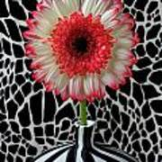 Daisy And Graphic Vase Art Print