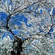 Dali Spring 5 Art Print