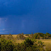 Dark Storm Over The Everglades Art Print
