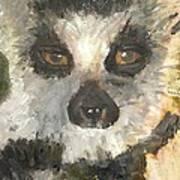 Darth Lemur Art Print