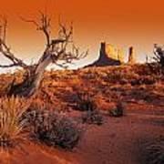 Dead Tree In Desert Monument Valley Art Print