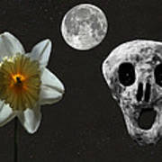 Death And The Daffodil  Art Print