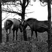 Debbie's Horses Art Print
