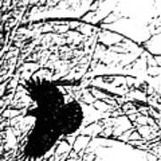 December Raven Art Print