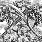 Decorative Engraving Art Print