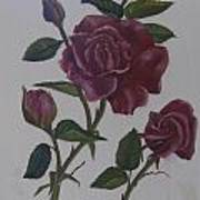 Deep Red Roses Art Print