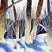 Deep Woods 1 Art Print