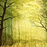 Deep Woods Art Print by Heather Matthews