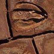 Deer Imprint In Mud Art Print