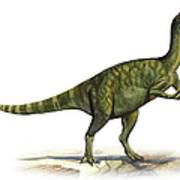 Deinocheirus Mirificus, A Prehistoric Art Print