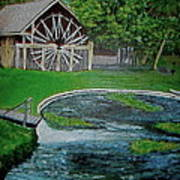 Deleon Springs Art Print