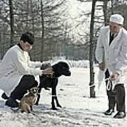 Demikhov's Laboratory Dogs, 1967 Art Print