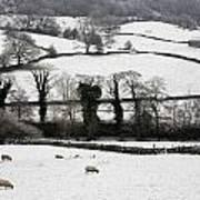 Derwent Valley, Derbyshire, England Art Print