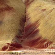 Desert Brushstrokes Art Print