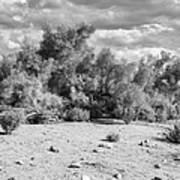 Desert Cloud Bw Palm Springs Art Print